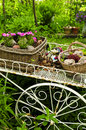 Flower cart in garden Stock Images
