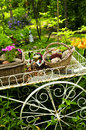 Flower cart in garden Royalty Free Stock Images