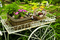 Flower cart in garden Stock Photography