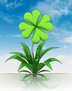Flower with cloverleaf blossom with sky illustration Royalty Free Stock Photo