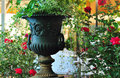 Flower deco bar terrace outdoor belle epoque vase Stock Images