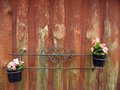 Flower decor metal with pots on wooden wall Stock Image