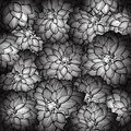 Flower decorative background monochrome vector illustration eps Stock Photo