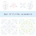Flower design element Royalty Free Stock Photo