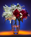 Flower Display - Still Life (Light Painting) Royalty Free Stock Photo