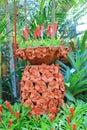 Flower earthenware pot Royalty Free Stock Photo