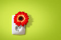 Flower electric socket ecology concept electricity friends nature Royalty Free Stock Images