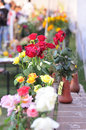 Flower exhibition Royalty Free Stock Photography