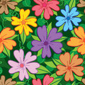 Flower five petal colorful seamless pattern Royalty Free Stock Photo