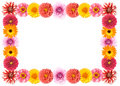 Flower frame Stock Photo