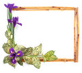 Flower Frame-6 Stock Images