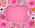 Flower Frame with Pink Flowers Stock Images