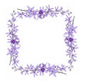 Flower frames Royalty Free Stock Photo