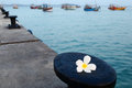 Flower frangipani on background of pier, boats and ocean Royalty Free Stock Photo