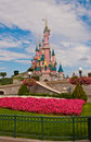 Flower garden and castle at Disneyland Stock Image