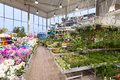 Flower and garden equipment shop interior of Royalty Free Stock Photography