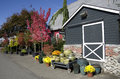 Flower garden shop beautiful flowers trees and pots were displayed at a near seattle Royalty Free Stock Photos