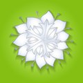 Flower green background realistic shadow file eps format Royalty Free Stock Photos