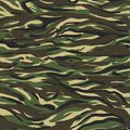 Camouflage Pattern Classic Clothing Style Green Brown Black Olive Colors Forest Texture