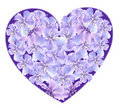 Flower Heart Stock Image