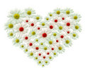 Flower heart Stock Photography