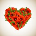 Flower heart of red poppies vector illustration Stock Image