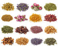 Flower and herbal tea collection Royalty Free Stock Photo