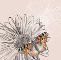 Flower illustration of beautiful butterflies flying around Stock Image