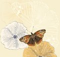 Flower illustration of beautiful butterflies flying around Stock Photo