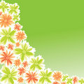 Flower illustration for card design Royalty Free Stock Image