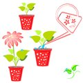 Flower illustrations with and watering can Stock Images