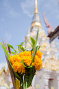 Flower with incense stick and candles for worship Buddha in temp Royalty Free Stock Photo