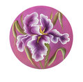 Flower of iris drawing by watercolor, hand drawn illustration.