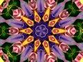 Flower Kaleidoscope Pattern