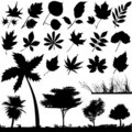 Flower, leaf and tree vector Royalty Free Stock Images