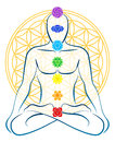 Flower Of Life Chakras Man Royalty Free Stock Photo