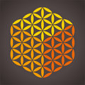 Flower of life cube with three different colors it is possible to create a from the vector on dark background Royalty Free Stock Photo