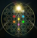 Flower of life with Kabbalah tree of life, Judaism