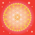 Flower of life in red space Royalty Free Stock Photography