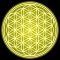 FLOWER OF LIFE sacred geometry Royalty Free Stock Photo