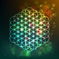 Flower of Life. Sacred Geometry. Symbol of Harmony and Balance. Vector Royalty Free Stock Photo