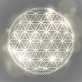 Flower of life. Sacred geometry, vector spiritual symbol.