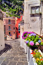 Flower lined street colorful in a coastal village in italy Royalty Free Stock Photography