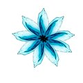 Flower made of water splash see my other works in portfolio Stock Image
