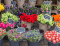 Flower market Royalty Free Stock Photo