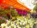 Flower market in Haizhu District Stock Image