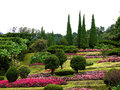 Flower park on the hill photo of Royalty Free Stock Photos