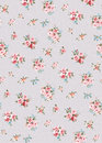 Flower pattern, hand-painted flowers, watercolor flowers