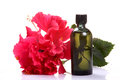 Flower perfume Royalty Free Stock Photo