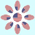Flower with petals of the American flag